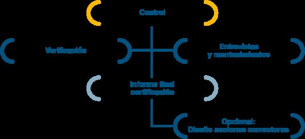 grafico-auditorias-covid-19-03